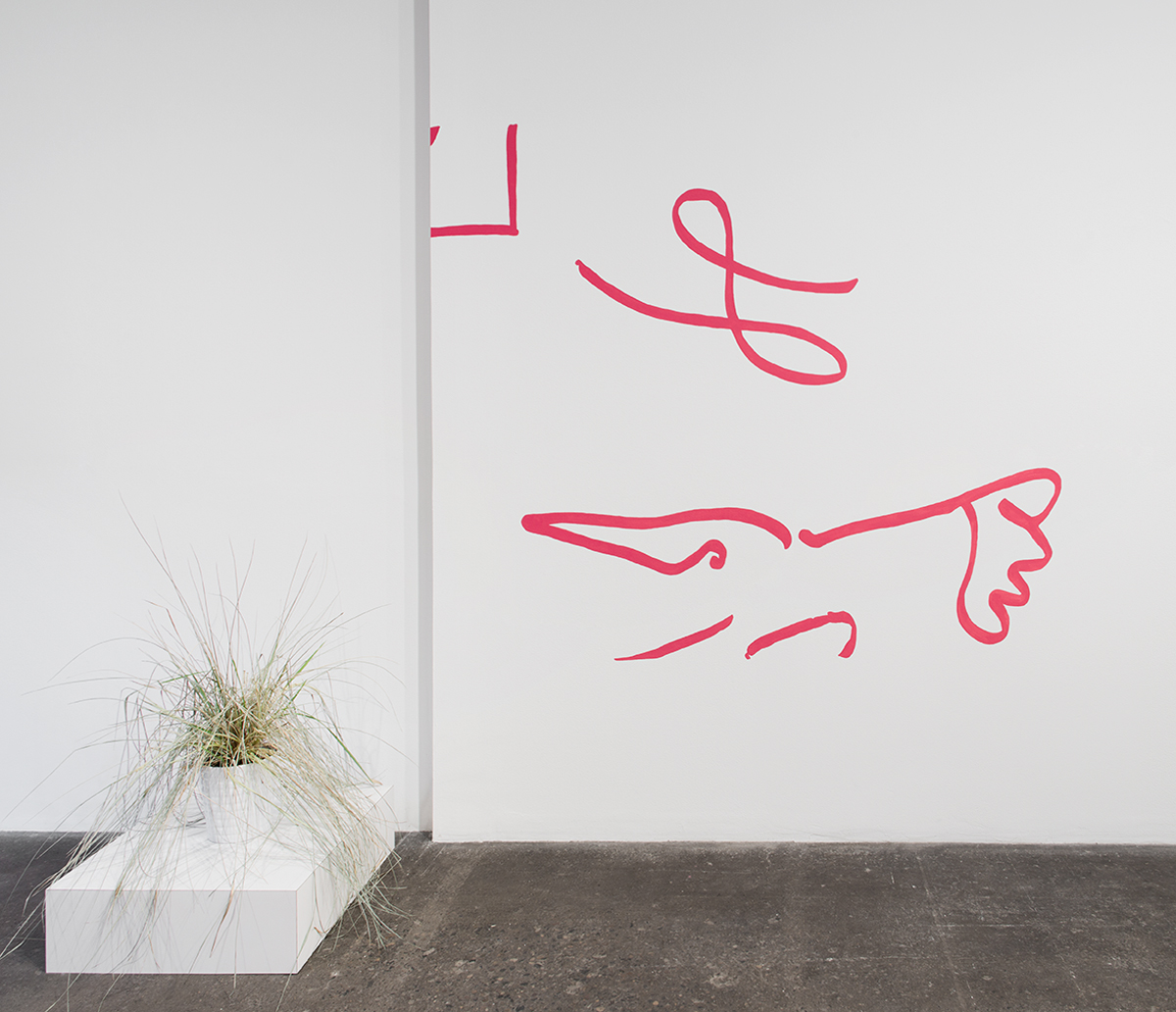 Untitled (Cartoon of Rich and Poor Peacocks), 2014. Flashe on wall. 72 x 85 inches.