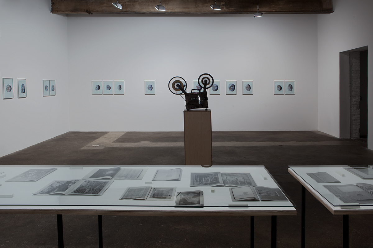 Savage Palms, Worn Stones, Moonshine Vision, installation view.
