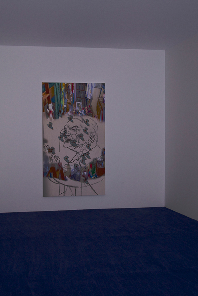 Untitled, 2011. Inkjet on canvas. 70 ½ x 39 ¼ inches. Unique.