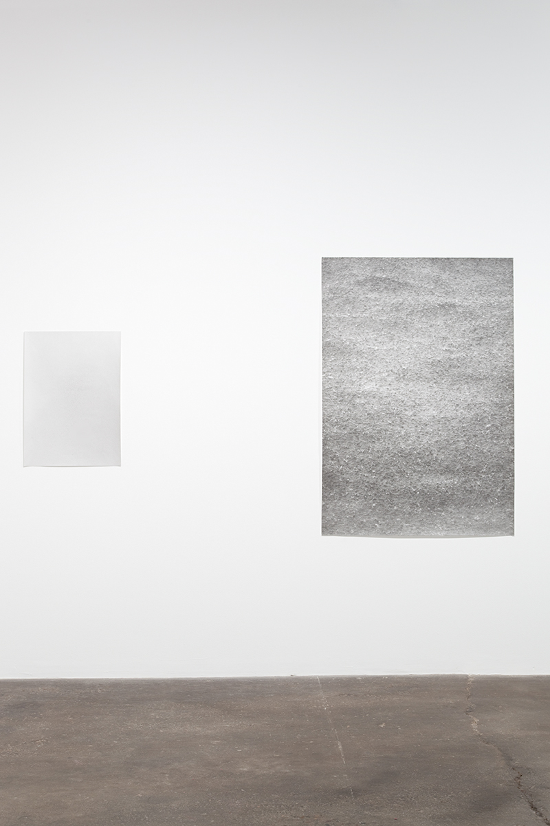 Jochen Lempert, installation view, Midway Contemporary Art. Left: Untitled, 2009. B&w photograph, silver gelatin print. 29 x 21 inches. Right: Regen (Rain), 2007. B&w photograph, silver gelatin print. 60 x 41 ½ inches.