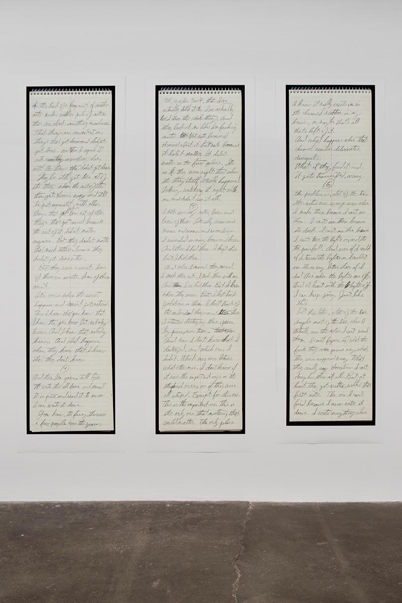 Hidden, detail, 2014. Nine inkjet prints. 114 x 336 inches, installed.