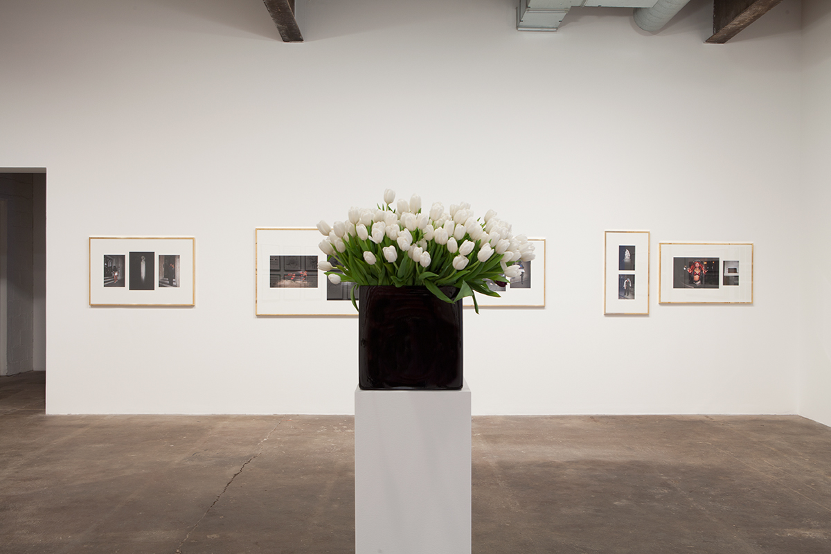 Plaisance, installation view. Background: Sven Augustijnen, Les Demoiselles de Bruxelles, 2008. Foreground: Willem de Rooij, Bouquet VI, 2010.