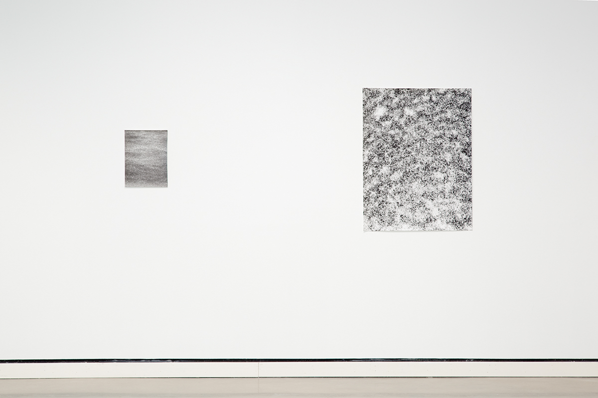 Jochen Lempert, installation view, Rochester Art Center. Left: Regen (Rain), 2003. B&w photograph, silver gelatin print. 14 ¾ x 11 ¾ inches. Right: Schneckengehäuse (Seashells), 2011. Photogram, silver gelatin print, unique. 39 ¼ x 31 ¼ inches.