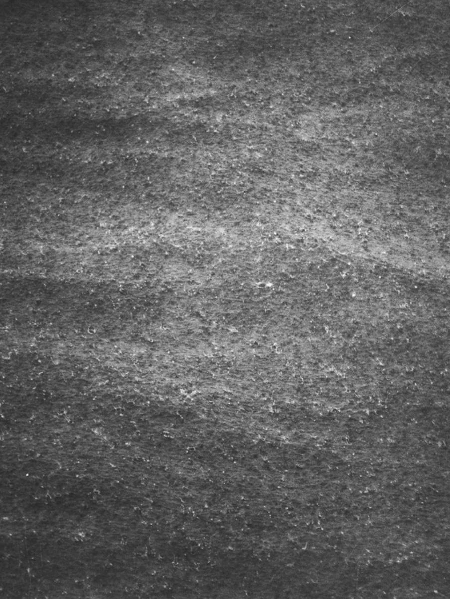 Regen (Rain), 2003. B&w photograph, silver gelatin print. 14 ¾ x 11 ¾ inches.