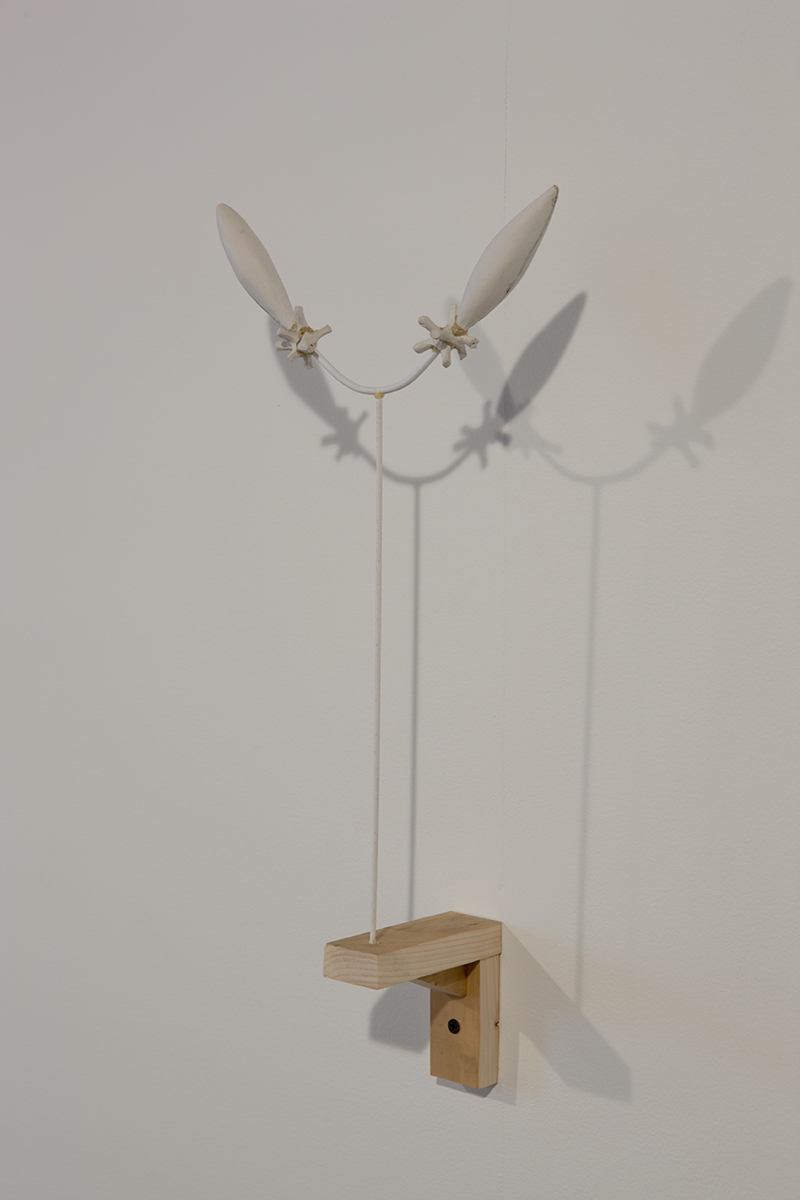 Untitled, 2007. DAS clay, wood.