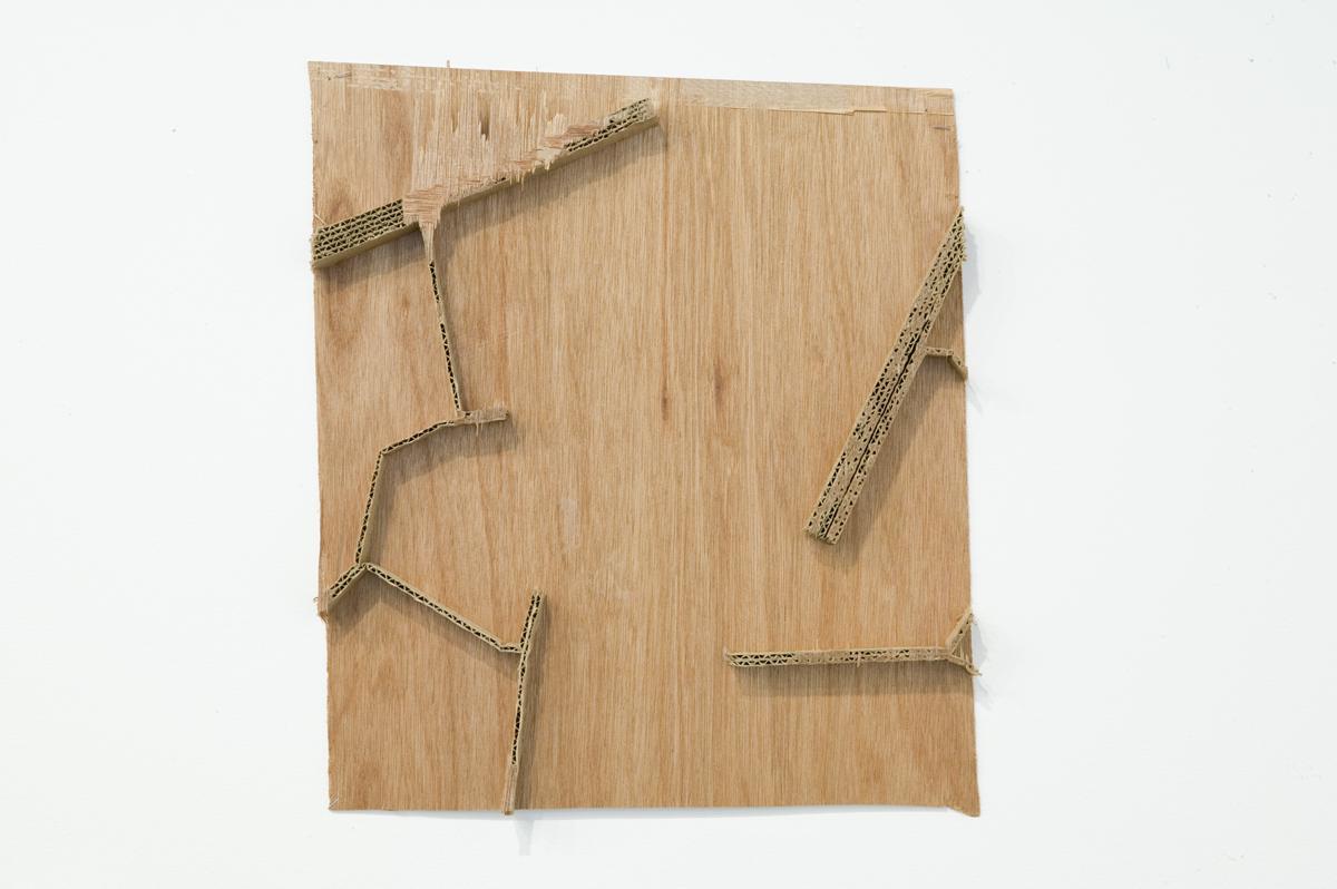 Undeterred, 2006. Hollow-core door fragments.