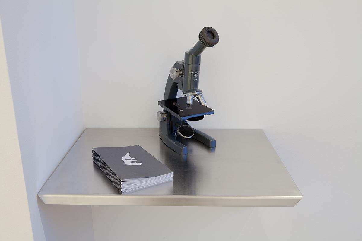 Natasha Sadr Haghighian, The Microscope, 2006. Modified microscope, sound installation, brochure. Dimensions variable. Courtesy Johann König, Berlin.