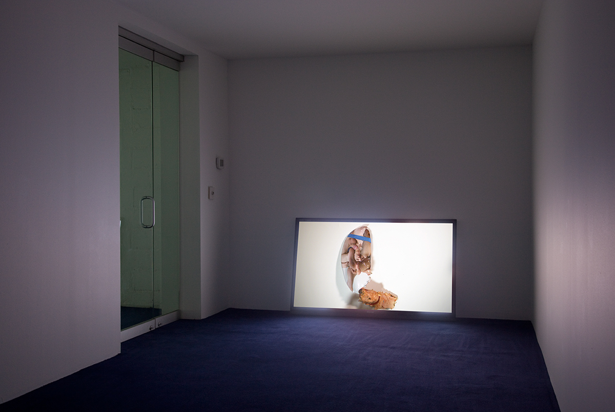Untitled, 2011. Digital High Speed Video, format variable. 24 minutes 54 seconds.