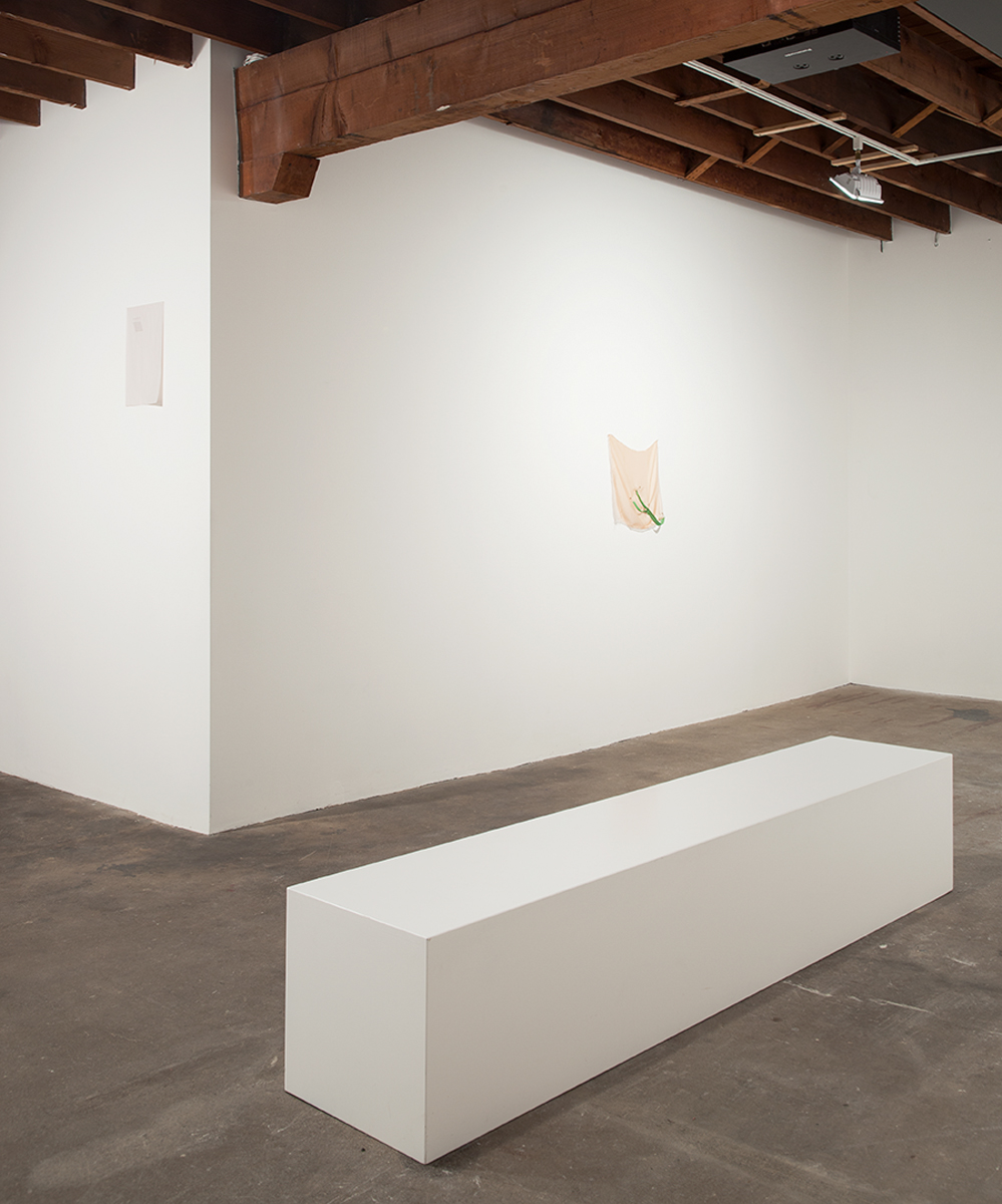 Its chiming in Normaltown, installation view. Gallery 2: L**E like Readymix paint. Left: EL, 2012; Right: Bedrock, 2012.