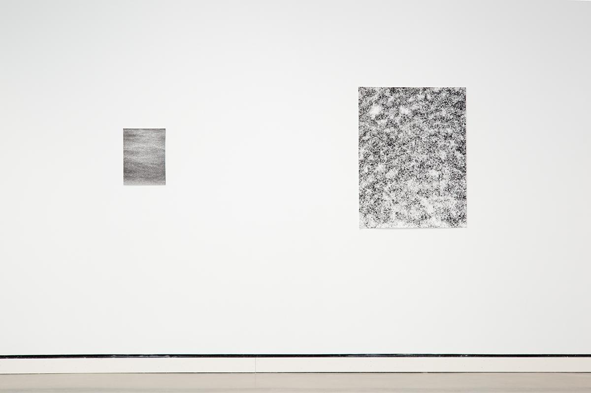 Jochen Lempert, installation view, Rochester Art Center. Left: Regen (Rain), 2003. B&w photograph, silver gelatin print. 14 ¾ x 11 ¾ inches. Right: Schneckengehäuse (Seashells), 2011. Photogram, silver gelatin print, unique. 39 ¼ x 31 ¼ inches.