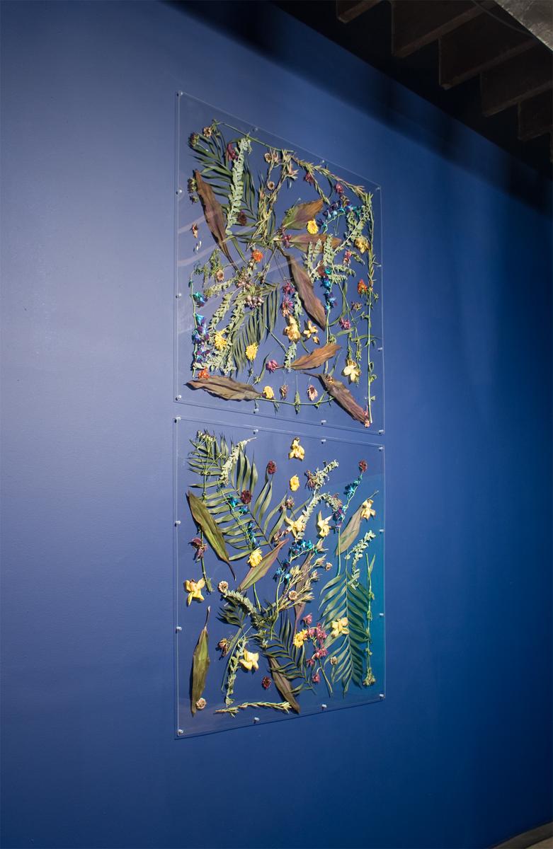 Untitled, 2009. Acrylic Plexiglas, fresh flowers. 2 parts, each 48 x 48 inches.