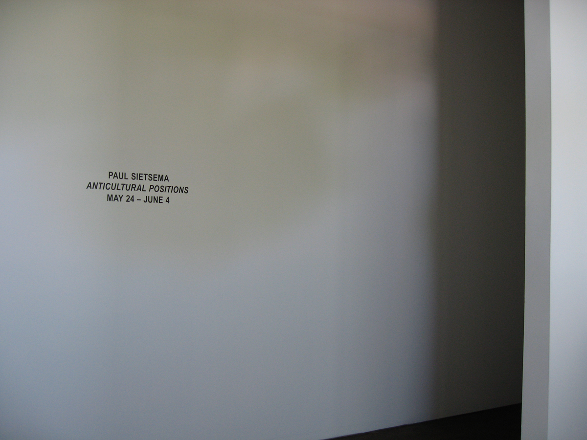 Anticultural Positions, installation view.