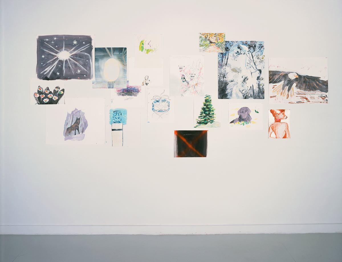 Drawn from LA (home is where the heart is), installation view. Mari Eastman. Mixed media on paper, dimensions variable. Courtesy of LOW.